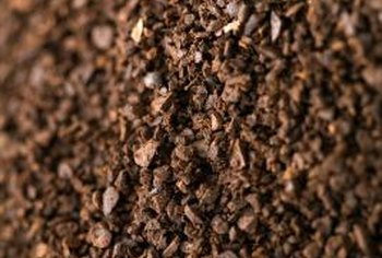 Dried used coffee grounds act as a homemade acidic fertilizer.