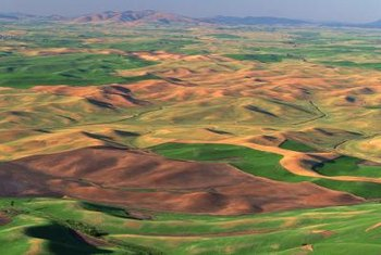 Glacial megafloods carved the undulating hills of Washington's Palouse region.