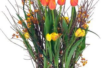 Potted tulips produce a showy display in the winter.