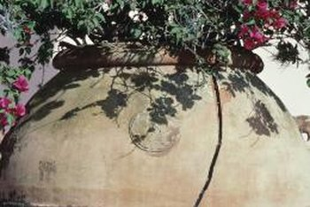 A concrete urn can hold a wide variety of annual or perennial plants.