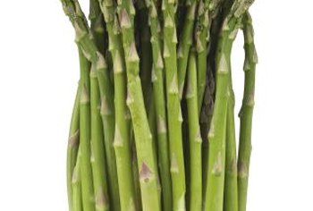 Fresh asparagus is a delicious summer crop.