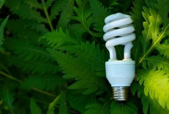 Actions as simple as changing a light bulb can have a significant impact on the environment.