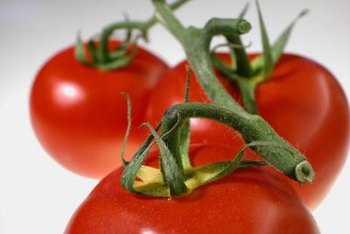 Large tomato varieties can overload the plants and cause vine breakage.