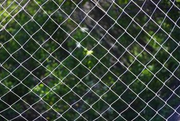 A chain link fence acts as a backdrop to garden plants.