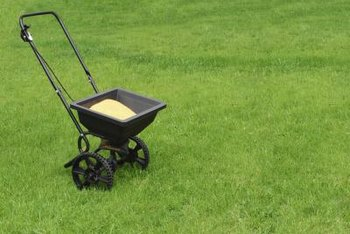 The same spreader that seeds your lawn can spread salt in the winter.