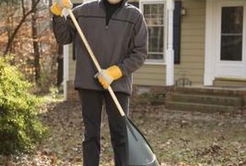 Rake your lawn to help remove dead grass and debris.
