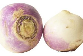 Turnips have a slightly more bitter flavor inherited from their mustard relatives.