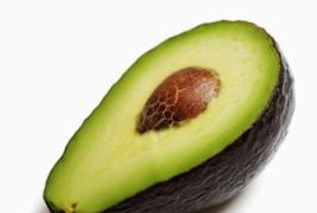 The buttery avocado fruit is shaped much like a pear and can have green or purple skin.