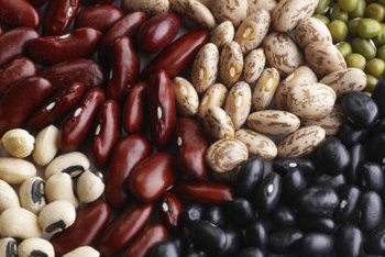 Lentils, chickpeas, navy, pinto and black beans are examples of legumes.