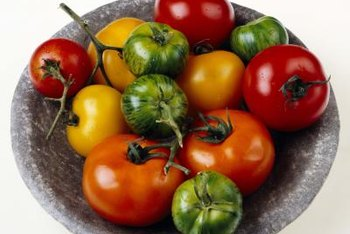 Green zebras are among the many colorful open-pollinated tomato varieties.