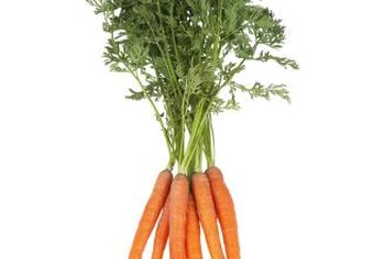 Grow your own fresh carrots at home.