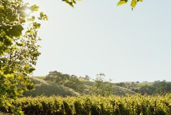 Many wine country villas are USDA eligible.