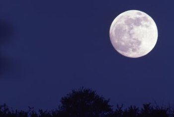 Moonlight gardening is a welcome challenge to many gardeners.