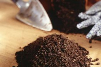 Healthy potting soil has a light texture and a medium-brown color.
