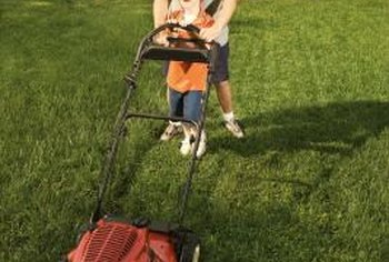 Proper lawn maintenance, such as frequent mowing, can reduce crabgrass.