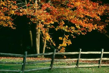 Rustic wooden fences are cheap and attractive.
