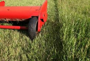 Adjusting your lawnmower's blade height keeps fescue healthy all year.