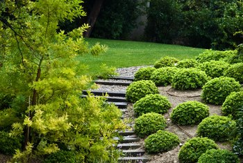 Shrubs and stairs help stabilize a hill.