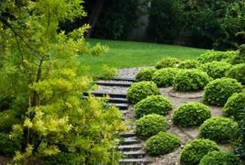 Choose a variety of plantings and hardscaping for sloping lawns.
