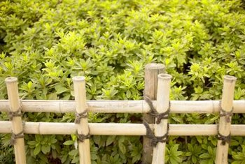 Use thick bamboo poles lashed together for Asian garden decor.
