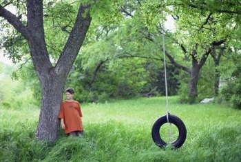 For a tire swing to be safe, it must be hung in the right place on the right type of tree.