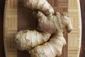 Harvest ginger for cooking when the foliage has died back in fall.