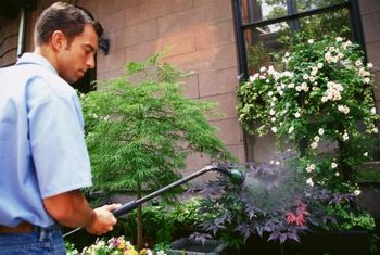 A basic garden sprayer can be transformed to inject fertilizer into your irrigation system.