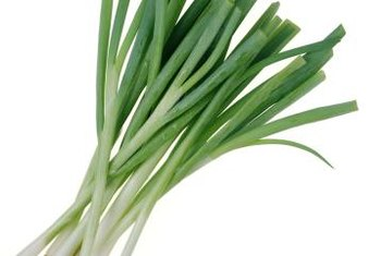 Green onions are also known as scallions.