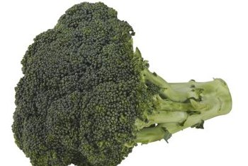 Broccoli crowns contain numerous flower buds.