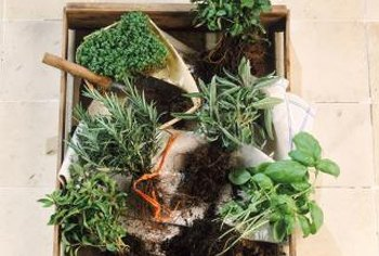 Crate gardening is a fun way to dress up an outdoor area.