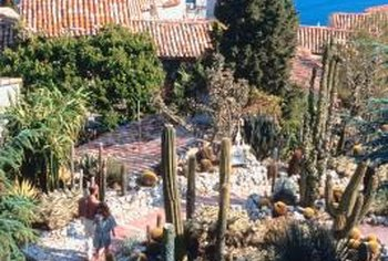 Well-groomed gardens with cactus and agave create an attractive space.