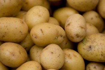 It's not your potatoes that moles are after.