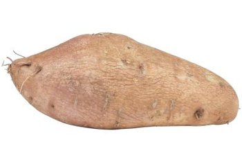 Sweet potatoes often form small roots while in storage.