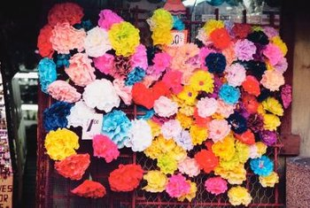 Carnations are part of a diverse genus that includes alpine species, large hybrids and species with grass-like foliage.