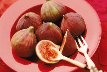 Common fig produces edible fruit, but fig ivy does not.
