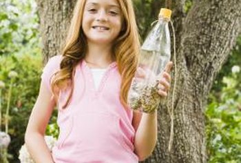 Make a small bird feeder from a pop bottle and a larger one from a milk jug.