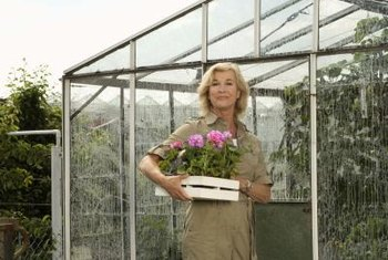 Good ventilation in a home greenhouse makes it more usable.