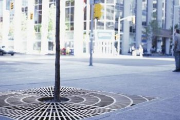 Tree grates in plazas and other paved areas help absorb rainwater runoff.