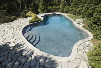 Heavily chlorinated pool water can damage poolside trees.