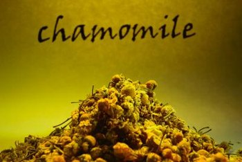 Dried chamomile is used in potpourri.