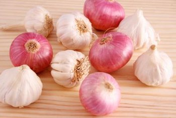 Onions and garlic share a botanical family and similar growing conditions.