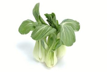 Bok choy needs to be planted in early spring or late summer.