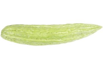 Armenian cucumbers tend to grow straighter when trained on a fence.