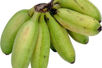 Plantains have a starring spot in Cuban cuisine.