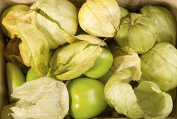 Tomatillos have a citrusy, acidic flavor.