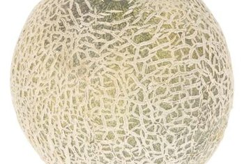 Muskmelon is often referred to as cantaloupe.