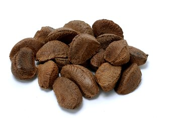 Pecans are a variety of hickory nuts.