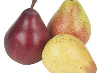 Pear trees need certain growing conditions to produce pears.