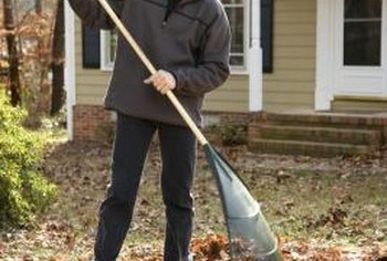 Start a compost pile with leaves from yard cleanups.