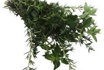 Homegrown herbs have many uses, including for ailments and cooking.